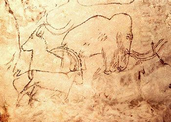 Grotte de Rouffignac - Périgord  La grotte aux cent mammouths  http://www.hominides.com/html/lieux/grotte-de-rouffignac.php