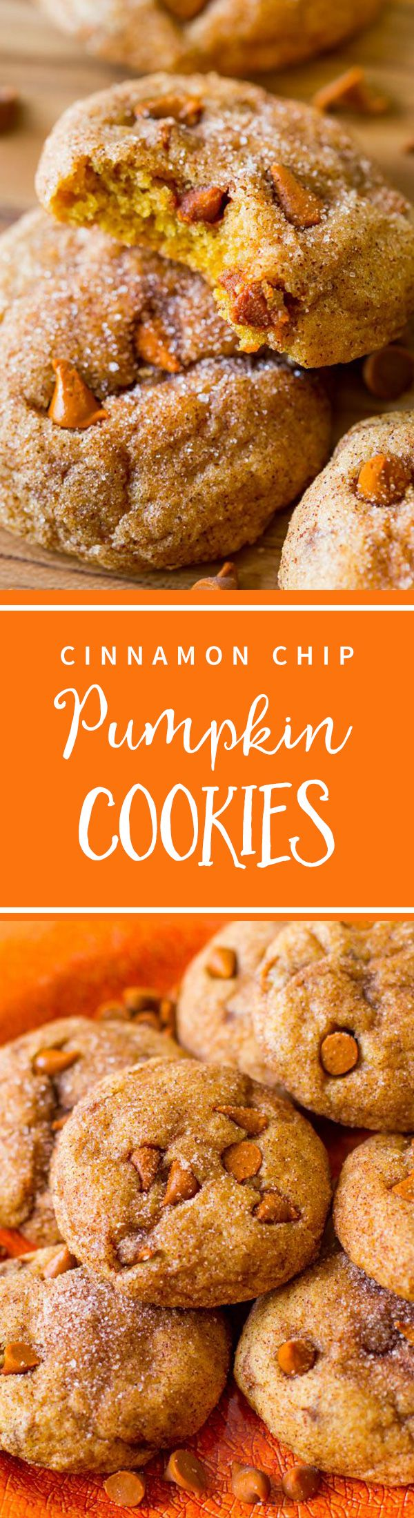 Cinnamon Chip Pumpkin Cookies have unbeatable spiced pumpkin flavor-- so easy with no mixer! Chewy, not cakey! Recipe at sallysbakingaddiction.com