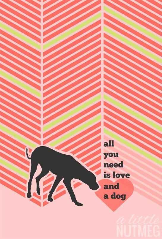 dog iPhone wallpaper, great dane Free iPhone Dog Wallpaper: June Edition // a little nutmeg