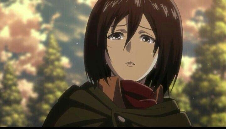 هجوم العمالقة أحتاج ك ليفاي Attack On Titan Anime Mikasa Anime