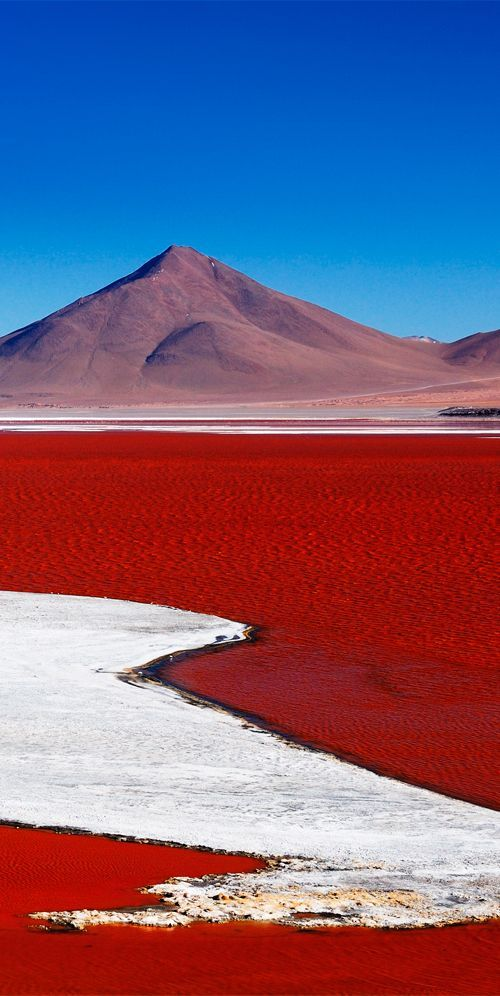 Laguna Colorada is a salt lake in Bolivia that gets its red colour from the pigmentation of algae #Bolivia