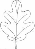 Free Leaf and Leaves Coloring Pages, Printable and Worksheets to Print and Color. Online Colouring Book. Printable Pages from KinderArt and KinderColor
