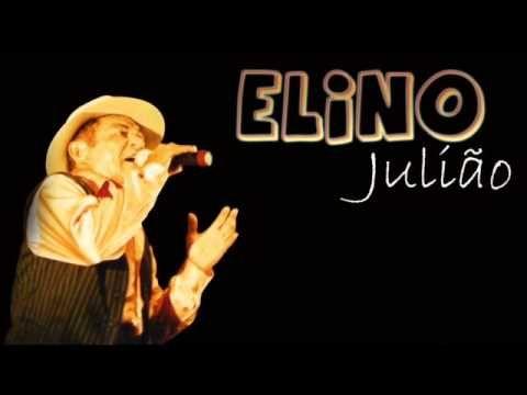Na unha do guaxinim - Elino Julião