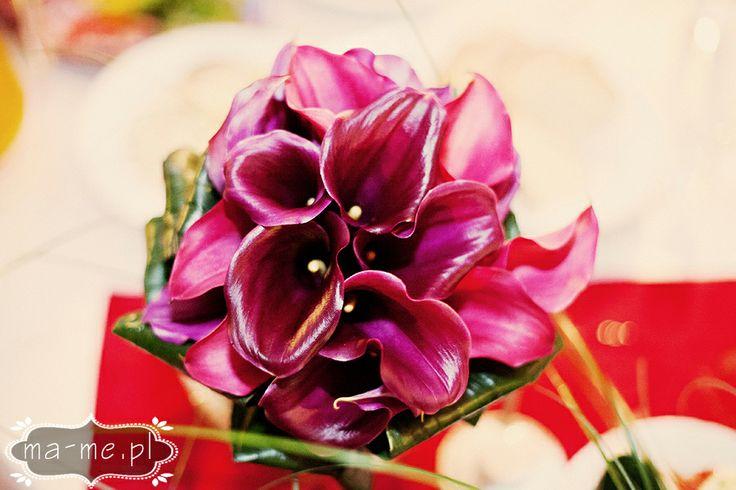 Fioletowe kalie / Purple calla lilies