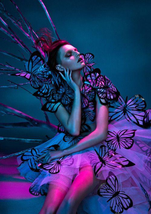 jewel tones + butterflies