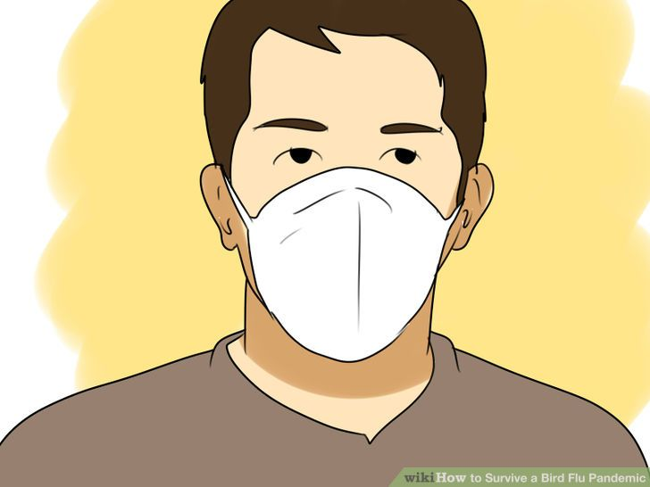 How to Survive a Bird Flu Pandemic