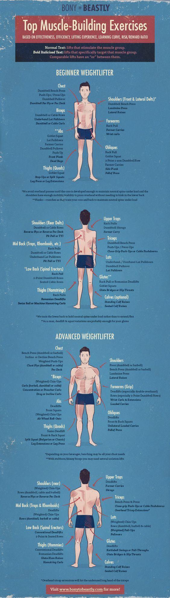 best menus fitness exercises images on pinterest circuit