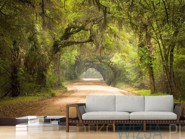 Fototapeta z Drogą przez las w Charleston