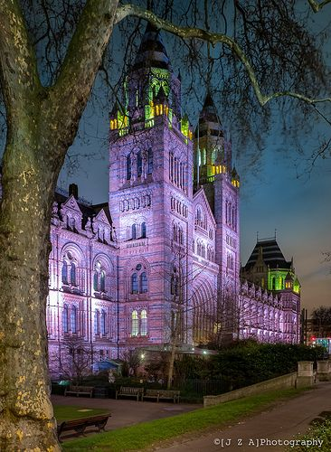 London's Natural History Museum's terracotta exterior is lit up every evening to fantastic effect