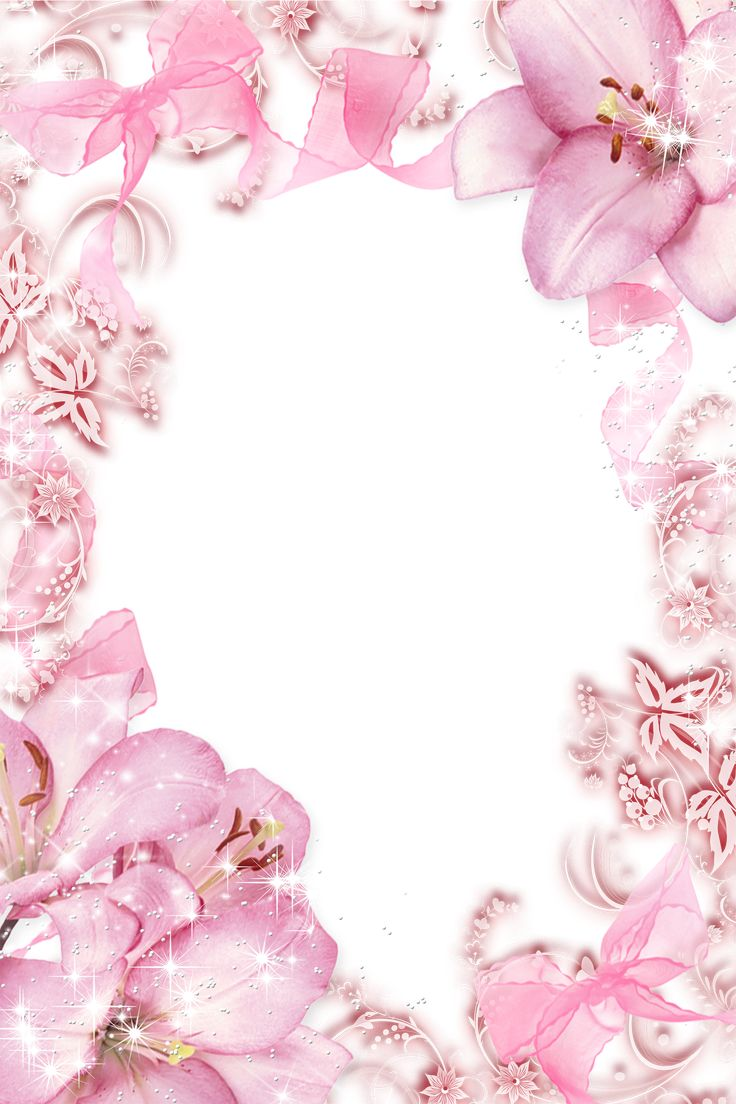 Transparent Pink Flowers Png Photo Frame Wallpapers And