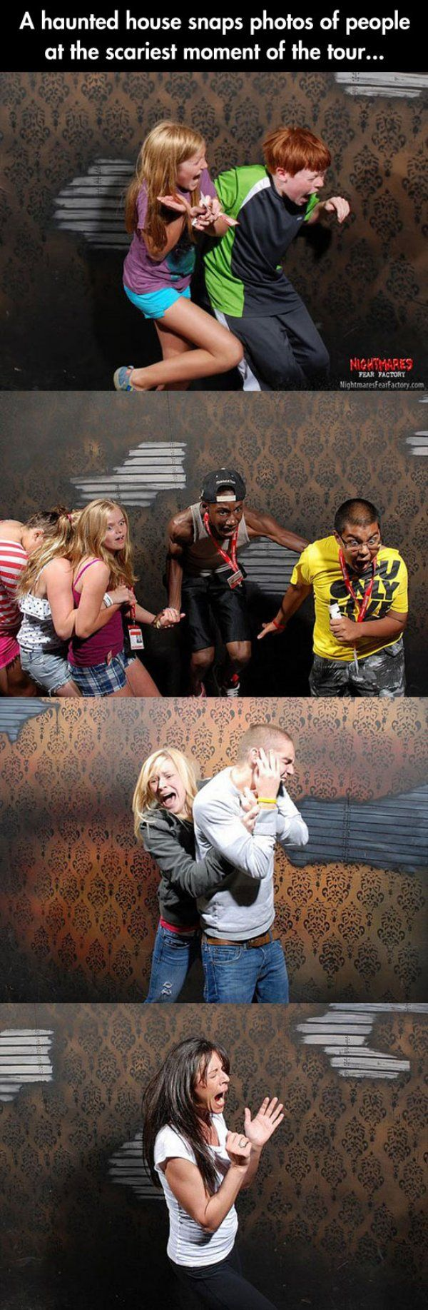 50 hilariously ridiculous haunted house reactions - A Haunted House Snaps Photos Of People At The Scariest Moment Of The Tour Some Of The Faces Are Priceless Hahahahaha