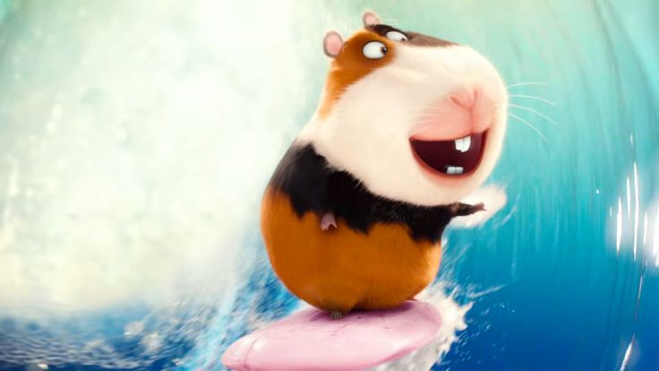 MelGallery The Secret Life of Pets Wiki Fandom powered by Wikia
