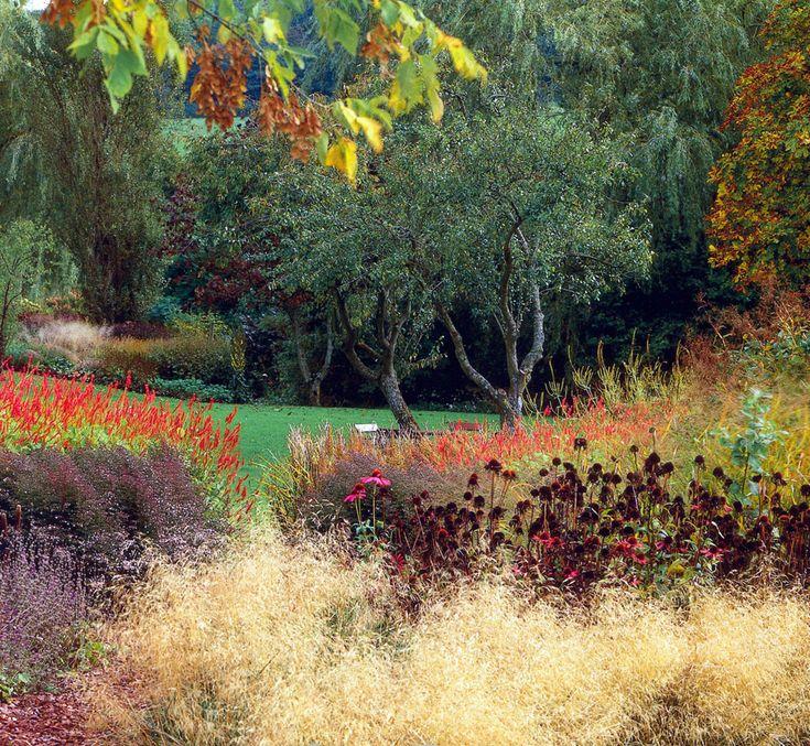 159 best garden by piet oudolf images on pinterest for Landscapes in landscapes piet oudolf