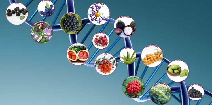 World S First Patented Synthetic Food