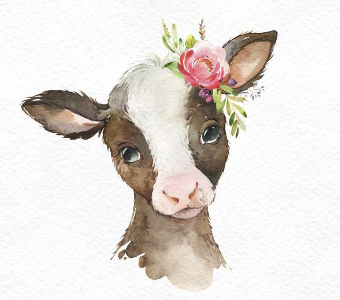 Farm Foal Calf Duckling Watercolor Little Animals Clipart