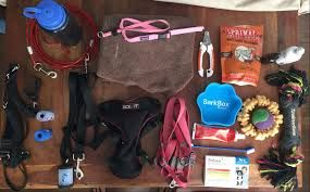 Image result for things you need for a puppy