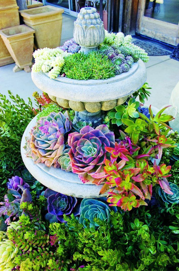Plantes Grasses D Exterieur Fontaine Utilisee Comme Jardiniere