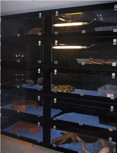 pet shop cages for snakes | Custom Reptile Cage & Rack System Gallery: Monster Cages
