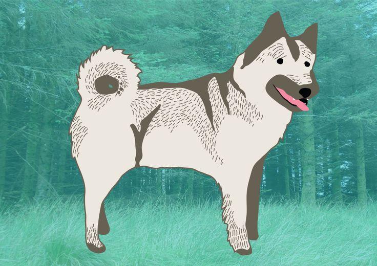 Elkhound on Illustrator.