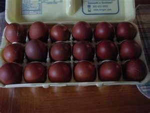 Black Copper Marans dark brown eggs.