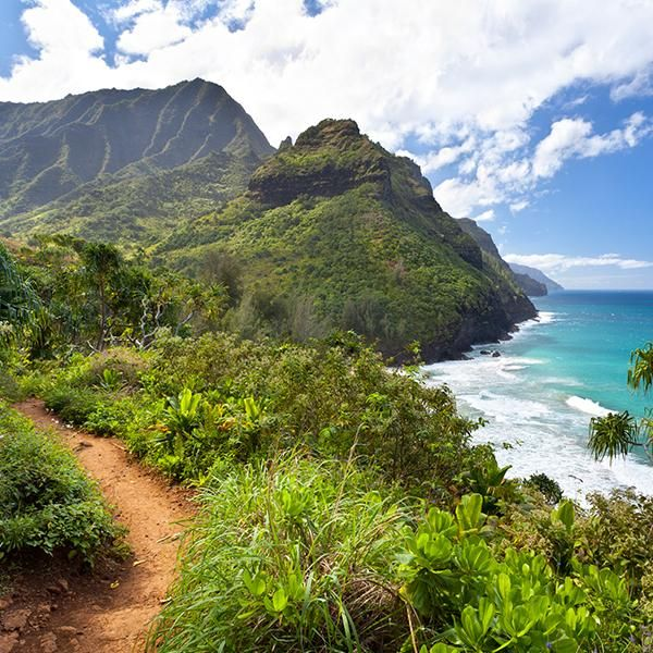 Get outside your bubble and travel to a new destination. Whether you venture 30 miles or 30,000 miles from your doorstep, it's time to see the sights, soak up the local culture, and get inspired. You can do it all when you book one of the best Kauai Island vacation packages, from visiting the must-see attractions to dining on the city's famous grub.