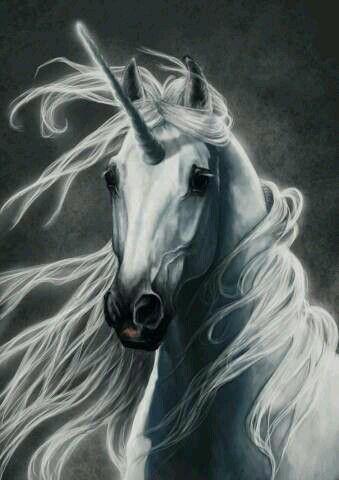 El Simbolismo Mágico del Unicornio | Compartiendo Luz con Sol