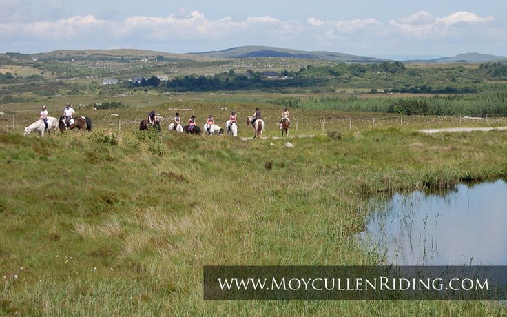 Day Treks of the magnificent Connemara countryside with Moycullen Riding Centre