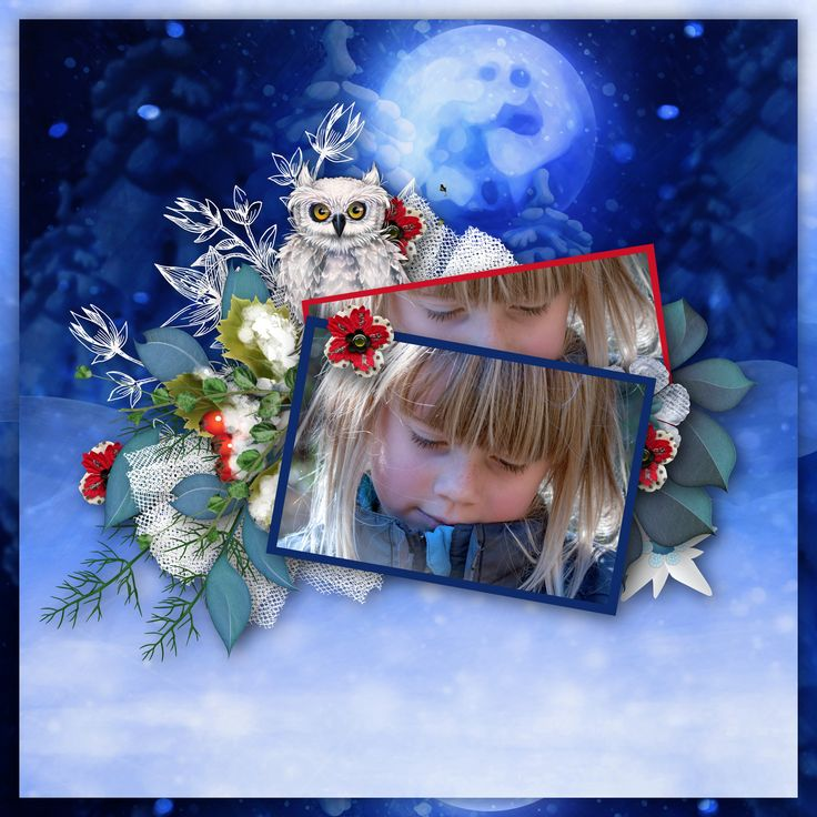 """Winter is on the way"" by butterflyDsign, http://www.digiscrapbooking.ch/shop/index.php?main_page=product_info&cPath=22_88&products_id=21199. https://www.digitalscrapbookingstudio.com/digital-art/kits/winter-is-on-the-way-page-kit-by-butterflydsign/, photo Pezibear, Pixabay"
