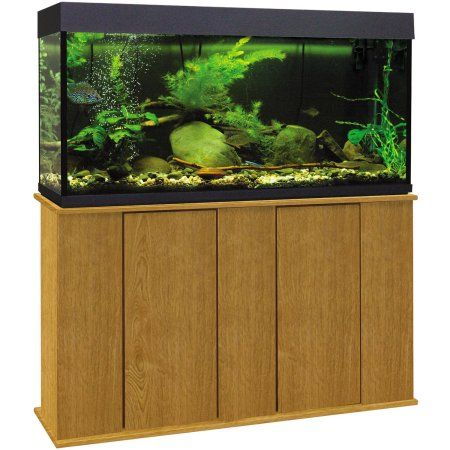 25 best ideas about 55 gallon aquarium stand on pinterest for 4 gallon fish tank