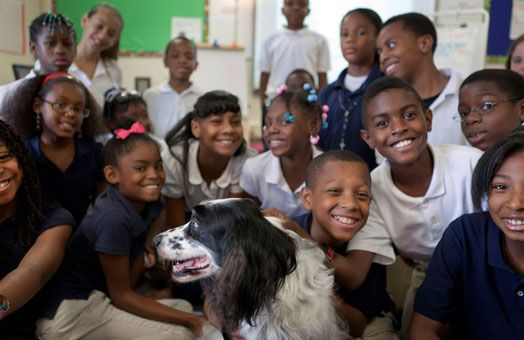 A new program in Kansas City that brings dogs into the classrooms to prevent bullying. The kids are taught kindness and love with the dogs, therefore helping them treat other kids better. It's a big success!