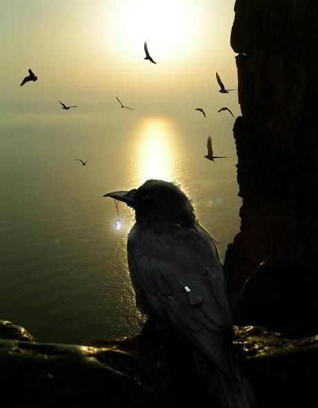 One Crow for sorrow, Two Crows for mirth; Three Crows for a wedding, Four Crows for a birth; Five Crows for silver, Six Crows for gold; Seven Crows for a secret, not to be told; Eight Crows for heaven