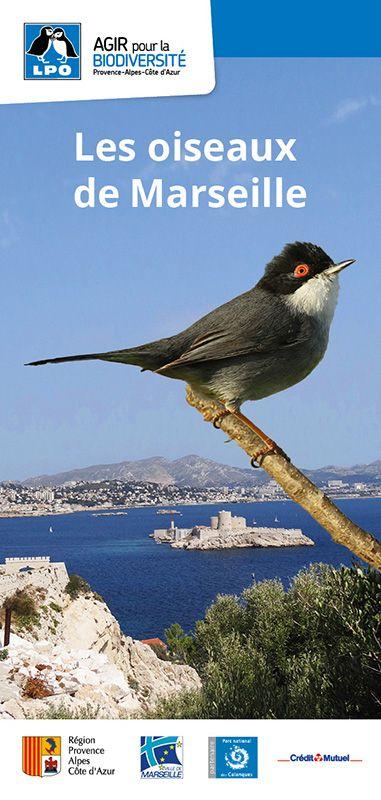 Carte découverte des oiseaux de Marseille