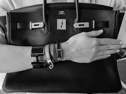 Image result for birkin