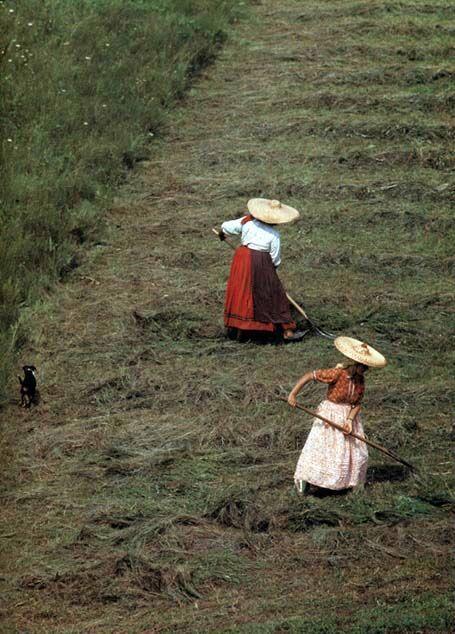 15-11-11 Hay-making women Vista, Former Kolozs County Péter Korniss