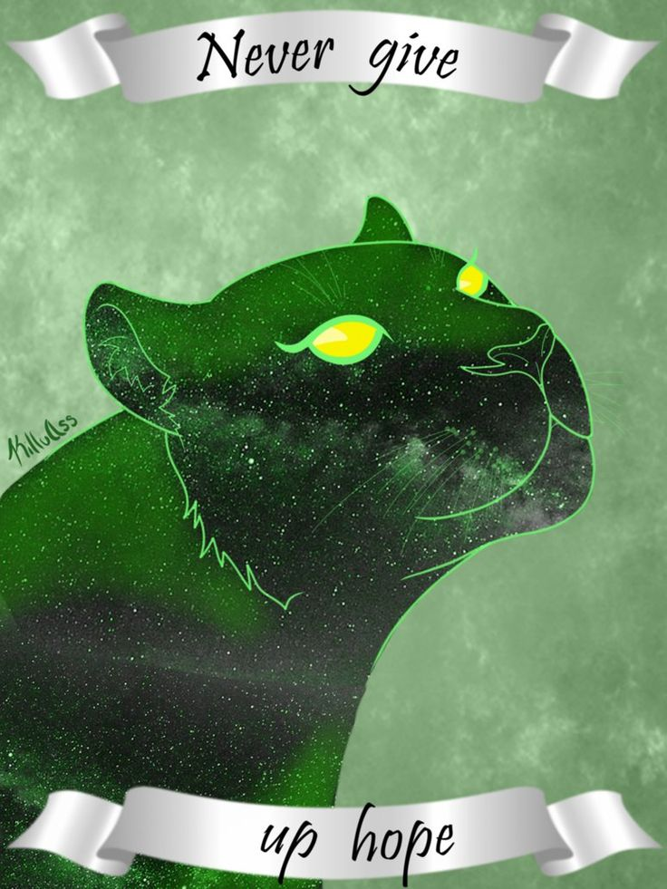 Never Give Up Hope- Green Lion of Voltron