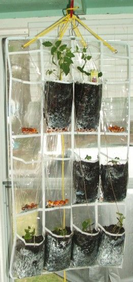 Inside Vertical Garden Cheap #garden #verticalgarden  (we Keep Saying We  Want To. Indoor Vertical GardensHanging Herb ...
