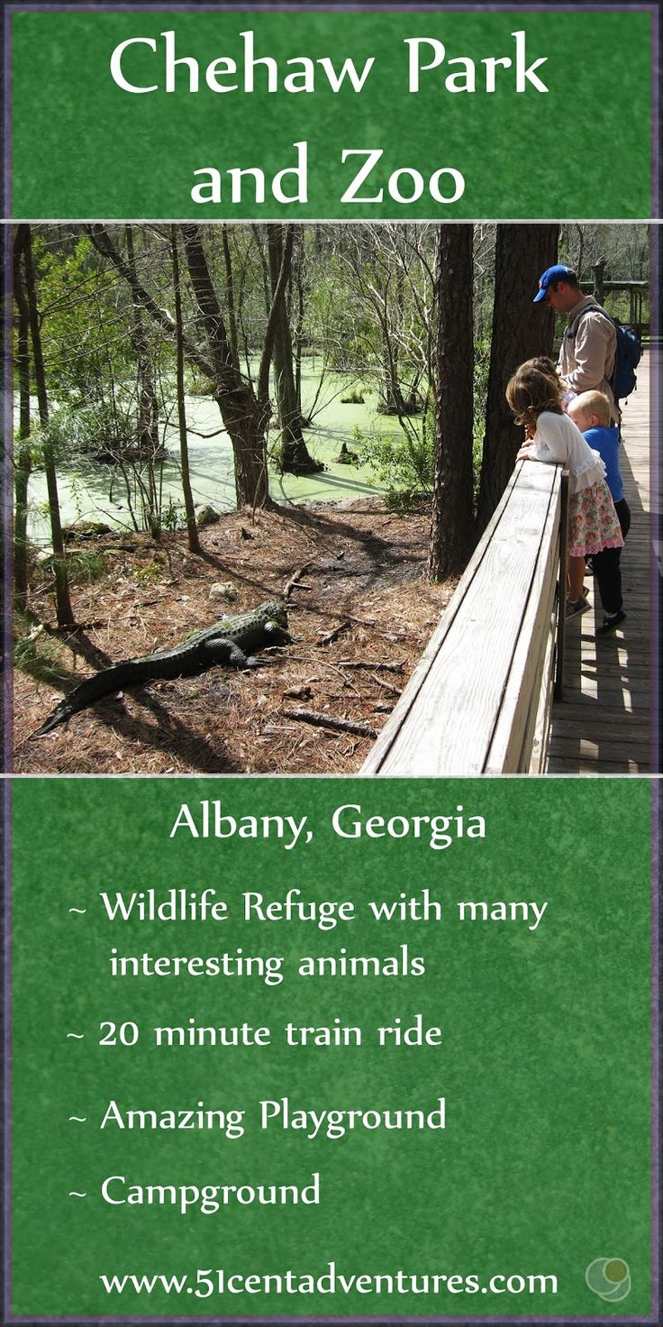 Albany Georgia Is Home To A Beautiful Park With A Zoo