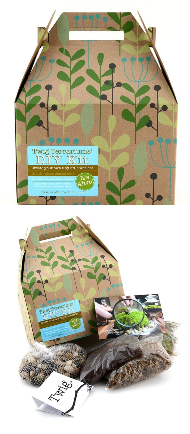 The Terrarium Kit is all in one kit that is packaged to spark interest on a store shelf. #RetailPackaging