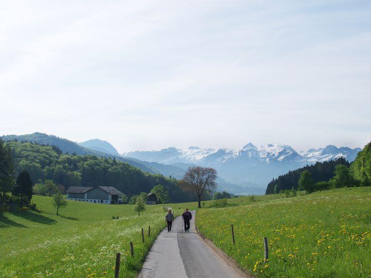 Nordic Walking in Bad Vigaun