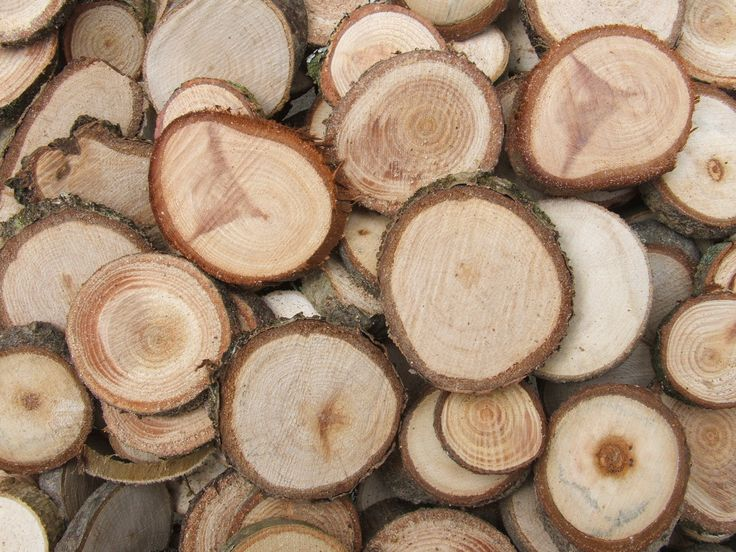1000 Images About Ma Hout On Pinterest Search Image
