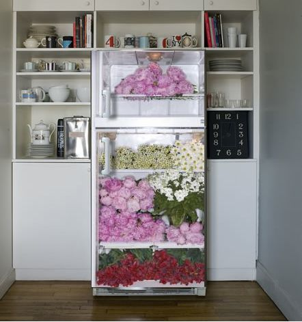 37 Best Images About Appliance Decals On Pinterest