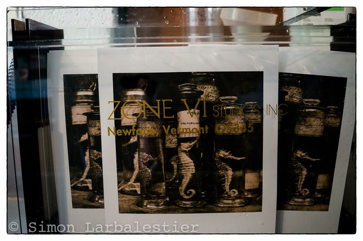 "Simon Larbalestier Today · Edited ·  ""Seahorses"" prints in the Zone VI archival washer prior to selenium toning. © Simon Larbalestier"