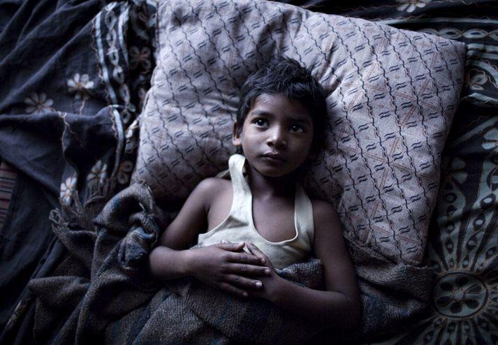 Greig Fraser (Lion) se impone en los premios del sindicato de directores de fotografía  ASC Oscars 2017 Portada Premios Relevantes