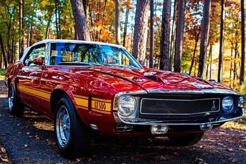 1969 Ford Mustang Shelby G.T. 500 SCJ Convertible