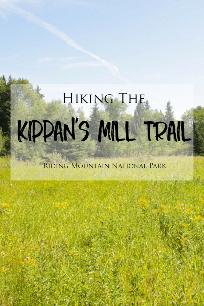 Hiking the Kippan's Mill Trail in Manitoba's Riding Mountain National Park | Kippan's Mill is an interesting self-guided trail with lots of history and it is a short and easy hike in Manitoba's Riding Mountain Park. Check out my blog to see more photos and read more about this trail!