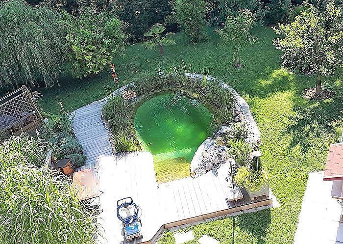 Gartengestaltung Mit Pool Natur Pool Schwimmteich Naturschwimmbecken