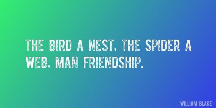 Best 25+ Spider Quotes Ideas On Pinterest