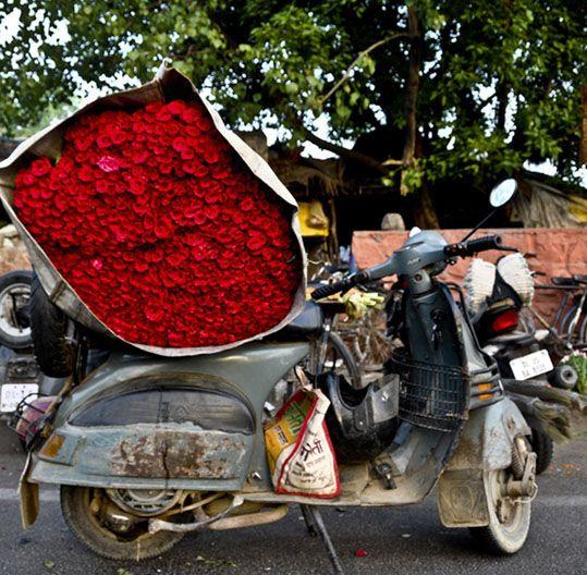 Mehrauli Flower Market☆ ◦●◦ ჱ ܓ ჱ ᴀ ρᴇᴀcᴇғυʟ ρᴀʀᴀᴅısᴇ ჱ ܓ ჱ ✿⊱╮ ♡ ❊ ** Buona giornata ** ❊ ~ ❤✿❤ ♫ ♥ X ღɱɧღ ❤ ~ Tues 24th Feb 2015