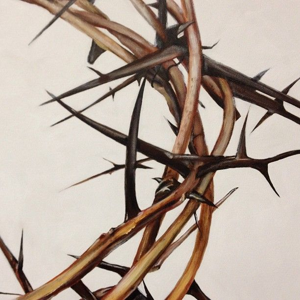 I have a Crown of Thorns on my wall.  It is a beautiful piece of art with a daily spiritual reminder.  LB