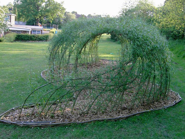 Living Willow Sculptures | Living Willow Structures. Pinned for inspiration in creating living willow structure in children's garden.